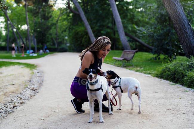 Mulher com tranças brincando com seus cães no parque — Fotografia de Stock