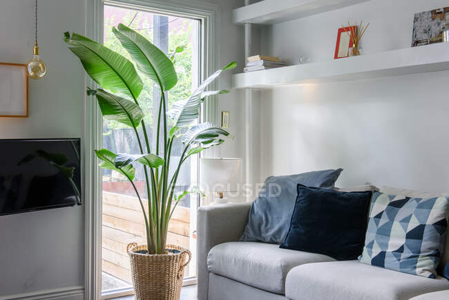 Diseño interior de salón con muebles modernos. casa estilo nórdico. interiores acogedores y luminosos. sofá elegante - foto de stock