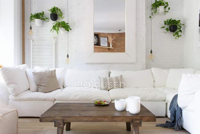 Интерьер современной гостиной с диваном и растениями — стоковое фото