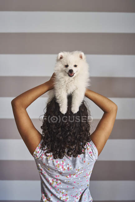 A girl puts her white dog on top of her head. Pet concept — Stock Photo