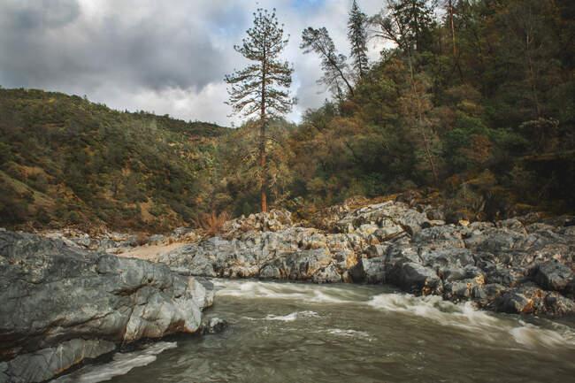 Río y rocas en las montañas altai. - foto de stock