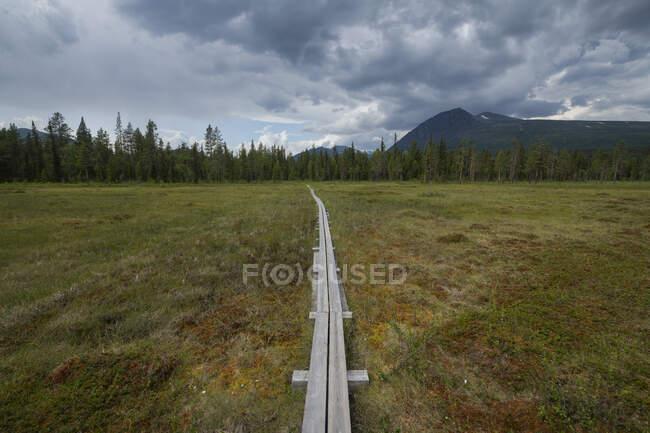 Wooden plank across boggy meadow along Padjelantaleden Trail, Lapland, Sweden — Stock Photo