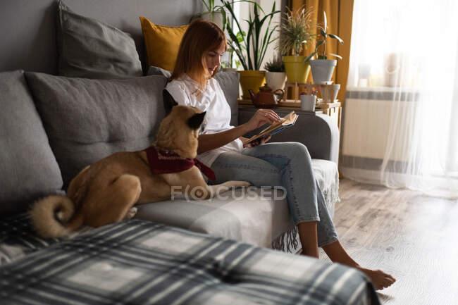 Девушка средних лет в повседневной одежде сидит на диване рядом с послушной собакой и читает книгу в уютной гостиной дома — стоковое фото