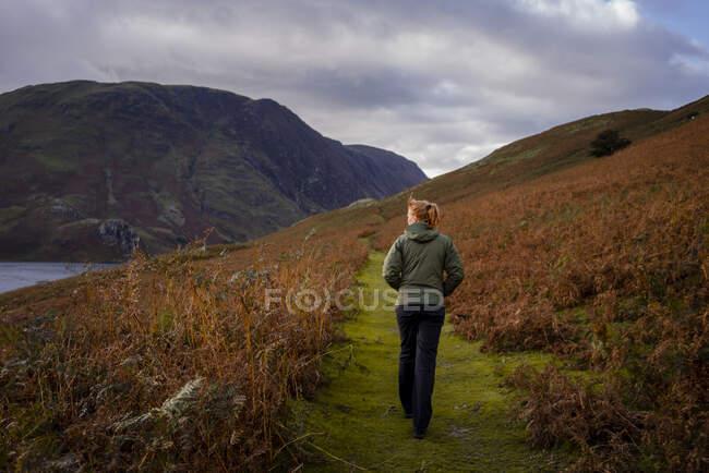 Mujer caminando por sendero rodeado de helechos en otoño, en el Lak - foto de stock