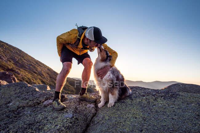 Perro lamiendo cara de dueño durante sendero corriendo en montañas - foto de stock