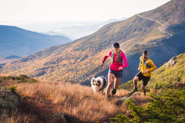 Hombre y mujer sendero corriendo con perro en las montañas al amanecer - foto de stock