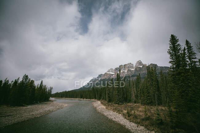Прекрасний краєвид з горами й деревами на природі. — стокове фото