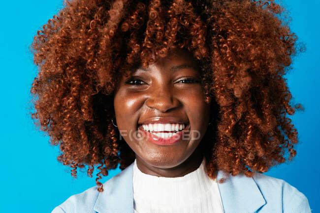 Portrait of a beautiful black businesswoman against blue background — Stock Photo
