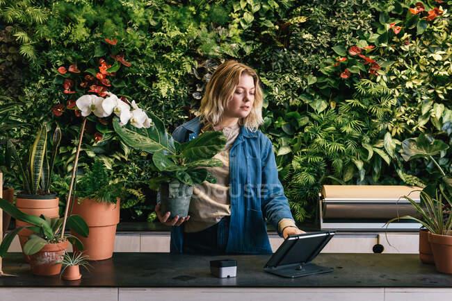 Joven empresario tomando el pago de crédito en la tableta en la tienda de plantas - foto de stock