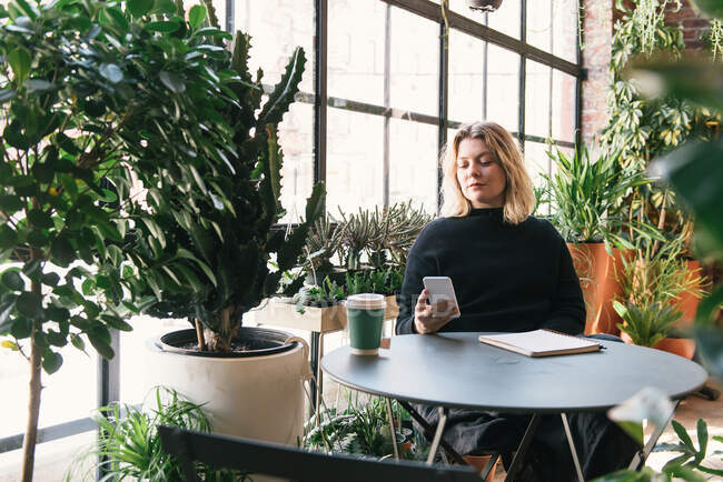 Mujer propietaria de una pequeña empresa leyendo desde el teléfono en la tienda de plantas con café - foto de stock