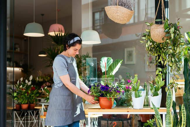 Флоріан працює у своїй квітковій крамниці. — стокове фото