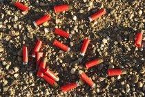 Cartucce per fucili a terra — Foto stock