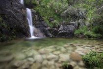Tir longue exposition du débit de la cascade — Photo de stock