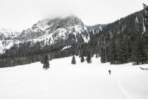 Snowcapped mountain landscape with pine trees and skiing person on distant — Stock Photo