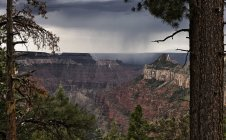 Stormy clouds over canyon and pine trees on foreground — Stock Photo