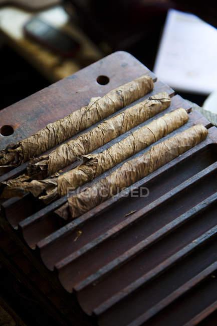 Handgedrehten Zigarren in der Fertigung — Stockfoto