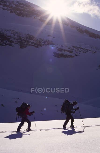 Пара лижного туризму на світ знаменитого Wapta походу на Wapta Icefields — стокове фото