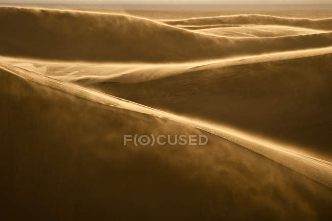 Sand Dunes in evening light — Stock Photo