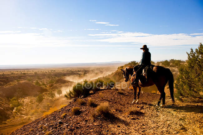 Cowboy watching at separate team of cattle wrestlers moving herd of cows down dusty Arizona desert trail — Stock Photo
