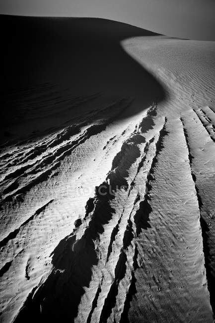 Texture lines and curve shadow on sand dune — Stock Photo