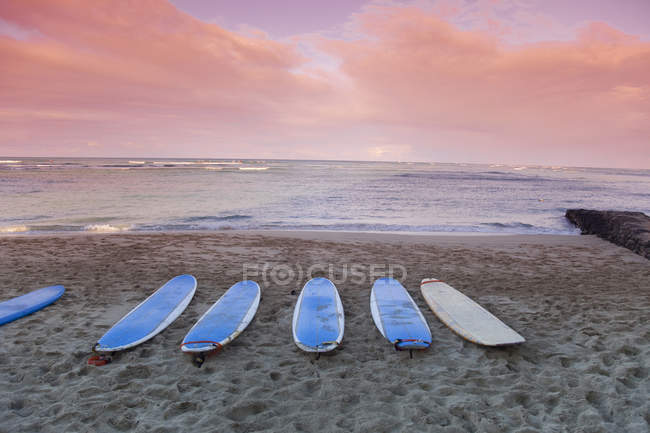 Surfboards on sandy beach — Stock Photo