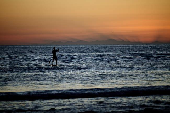 Silhueta do homem no carrinho paddleboard por do sol — Fotografia de Stock