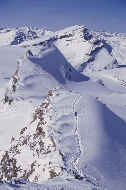 Чоловіки за спаданням пік на гірськолижний тур по світу знаменитий Wapta походу на Wapta Icefields — стокове фото
