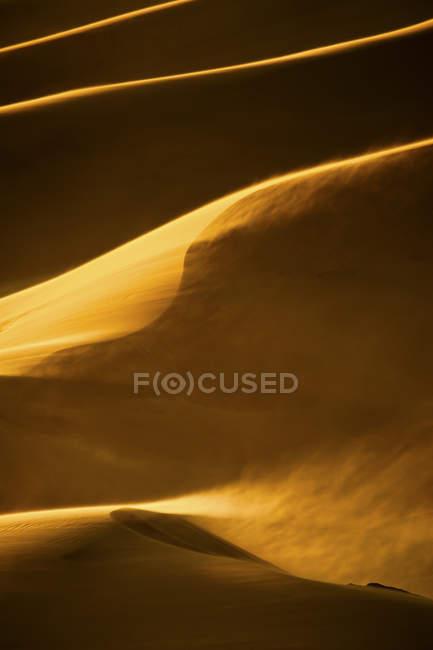 Sand Dunes in evening light — Stock Photo