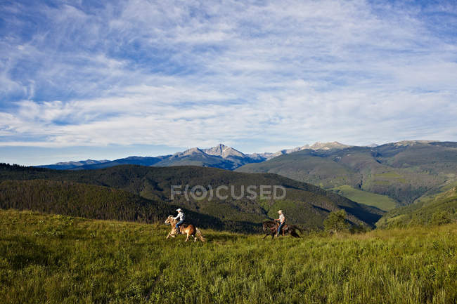 Two cowboys riding gallop horses in high alpine mountain summer meadow — Stock Photo
