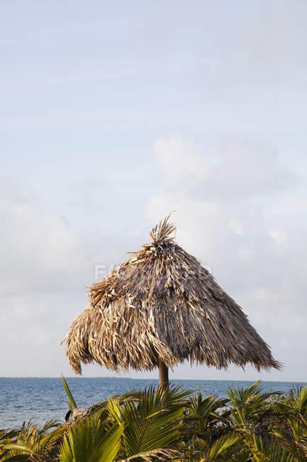 Guarda-chuva de palha na praia — Fotografia de Stock