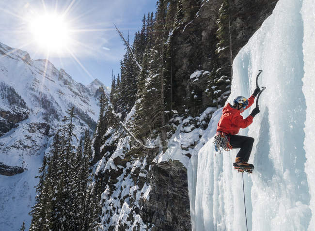 Man ice climbing up steep ice face on frozen Lake Louise Falls, Banff National Park, Lake Louise, Alberta, Canada — Stock Photo