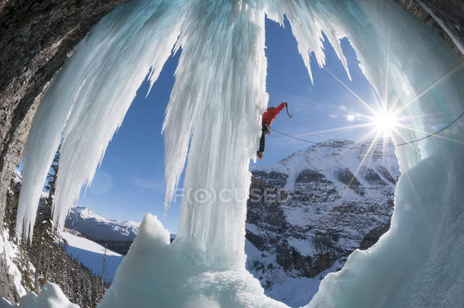 Man ice climbing newly formed ice pillar on right side of Louise Falls, Banff National Park, Lake Louise, Alberta, Canada — Stock Photo