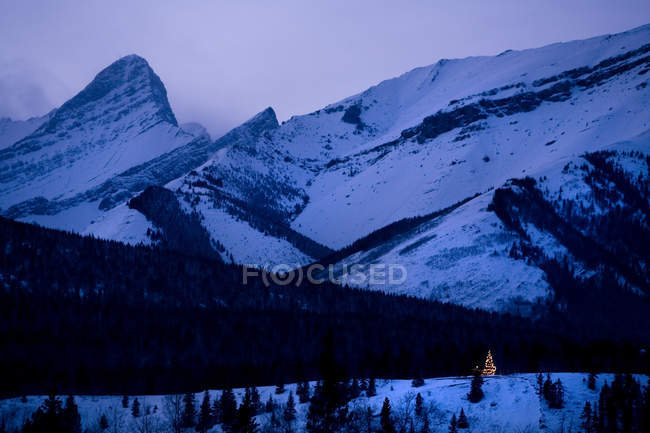 Christmas tree shining in evening light under snowcapped mountains — Stock Photo