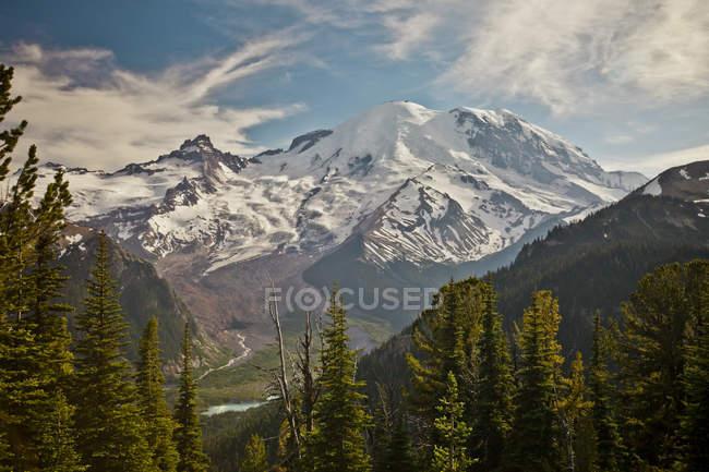 Montagnes aux sommets enneigés de pins sur le premier plan dans la lumière du soleil — Photo de stock