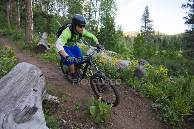 Man mountain biking on Scotts Lake trail in Lake Tahoe, CA — Stock Photo