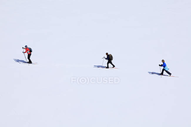Family crossing Botheration Pond on cross country ski outing — Stock Photo