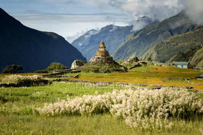 Стародавні буддійський храм з зеленому полі і гори, Непал — стокове фото