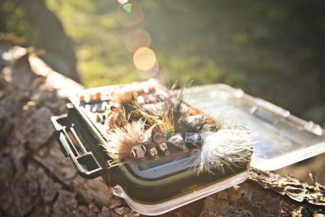 Caso de pesca señuelos en luz del sol, cerca de tiro - foto de stock