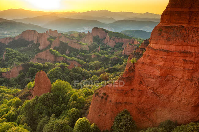 Red rocks with lush greenery in evening sunlight — Stock Photo
