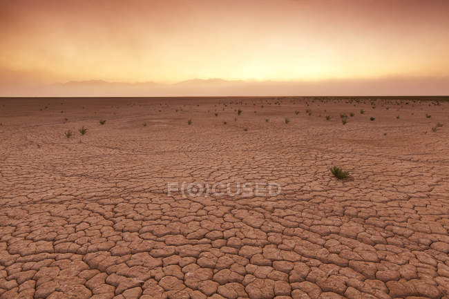 Vista del terreno incrinato con cielo di alba — Foto stock