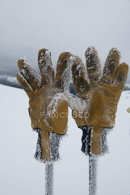 Rime ice forms on pair of gloves, selective focus — Stock Photo