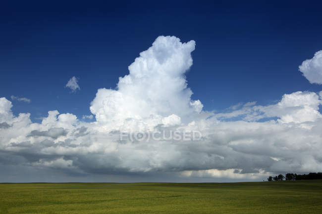 storm clouds on deep blue sky above green field stock photo
