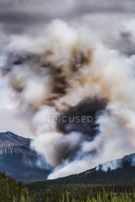 Smoke above mountain woods during fire — Stock Photo