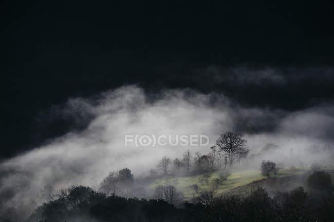 Paesaggio con la montagna di nebbia — Foto stock