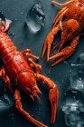 Крупним планом перегляд двох crayfishes на стільницю кубики льоду — стокове фото