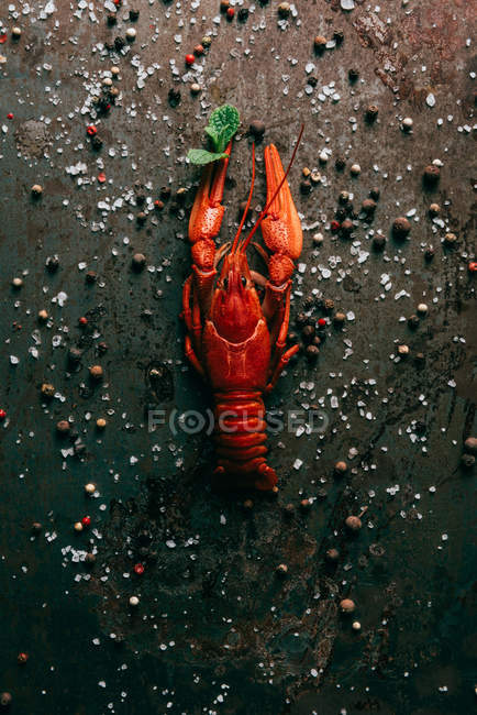 Top view of crayfish with mint on rustic table with salt and black pepper — Stock Photo