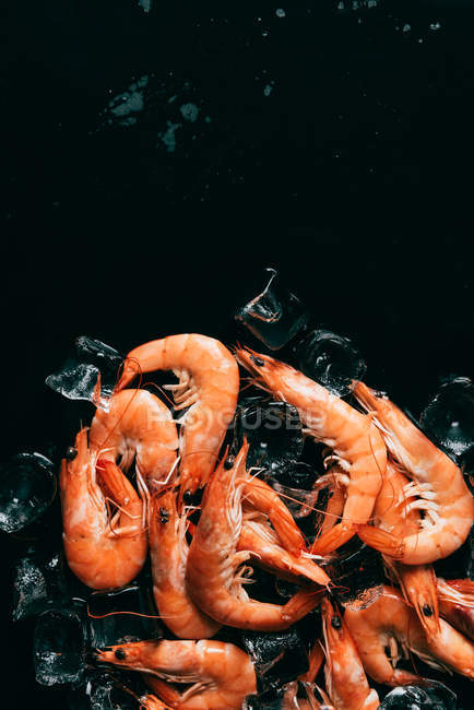 Vista superior de camarones y cubitos de hielo en superficie oscura - foto de stock