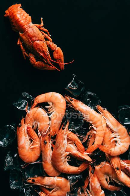 Vista superior de cangrejos, camarones y cubitos de hielo en la mesa - foto de stock