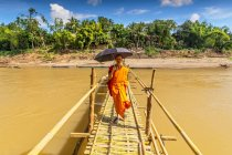 Novice Buddhist monk walking under umbrella across bamboo bridge over Nam Khan in Luang Prabang, Laos — Stock Photo