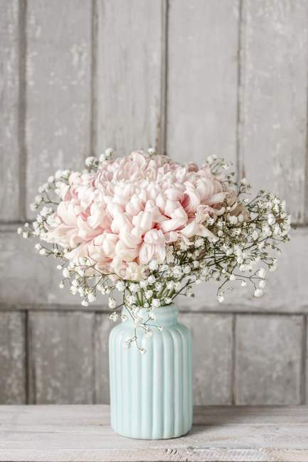 Pink chrysanthemum flowers with gypsophila paniculata twigs on wooden background — Stock Photo
